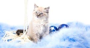 Bola azul, decoración del Año Nuevo Imagen de archivo libre de regalías