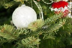 Bola bonita do Natal em uma árvore de Natal Fotos de Stock