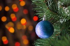 Bola brilhante azul na árvore foto de stock royalty free