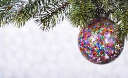 Bola brilhante bonita em um fundo do inverno Imagens de Stock