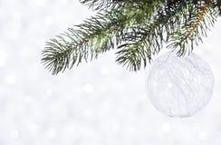 Bola brilhante bonita em um fundo do inverno Imagem de Stock