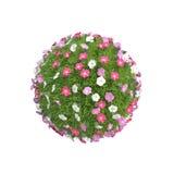 Bola com flores Imagens de Stock Royalty Free