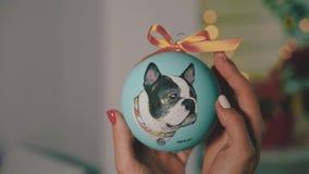 Bola da decoração do ano novo Pintura fêmea na bola do ano novo Bola pintado à mão do ano novo, retrato do cão na bola, lento filme