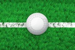 Bola da linha branca e do hóquei no campo de grama do esporte Imagens de Stock Royalty Free