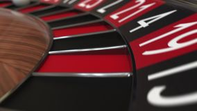 A bola da roda de roleta do casino bate 6 seis pretos vídeos de arquivo