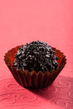 Bola da trufa de chocolate Foto de Stock