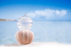 Bola de cristal de la Navidad en la playa y el erizo de mar con vagos del paisaje marino Fotografía de archivo libre de regalías