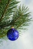 Bola de cristal en el árbol de navidad Imagen de archivo libre de regalías