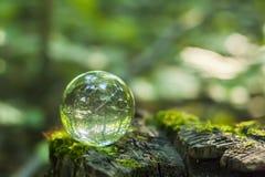 Bola de cristal en un st de madera Foto de archivo libre de regalías