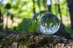 Bola de cristal en un st de madera Fotografía de archivo libre de regalías