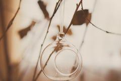 Bola de cristal o palmatoria en una rama de árbol, tono retro foto de archivo