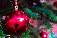 Bola de cristal roja en el árbol de navidad Foto de archivo libre de regalías
