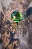 Bola de cristal verde Fotos de archivo libres de regalías