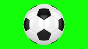 Bola de futebol em um fundo verde vídeos de arquivo
