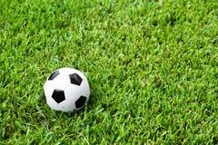 Bola de futebol Futbol na grama Fotografia de Stock Royalty Free