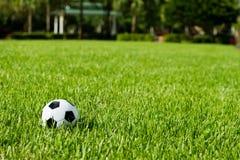 Bola de futebol Futbol na grama Foto de Stock Royalty Free