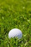 Bola de golfe Foto de Stock