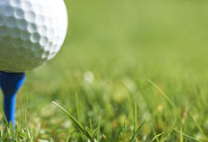 Bola de golfe Imagens de Stock