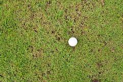 Bola de golfe da vista superior Fotografia de Stock Royalty Free