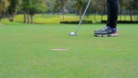 Bola de golfe de colocação longa do pro golfe dentro ao furo, tempo da cena do por do sol foto de stock royalty free