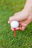 A bola de golfe e o ferro na grama verde detalham o macro Imagens de Stock Royalty Free