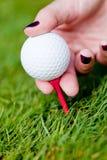A bola de golfe e o ferro na grama verde detalham o verão macro exterior Fotos de Stock Royalty Free