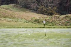 Bola de golfe em pôr o verde da prática Imagem de Stock