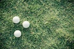 Bola de golfe na grama Fotografia de Stock Royalty Free