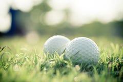 Bola de golfe na grama Imagem de Stock Royalty Free