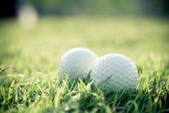 Bola de golfe na grama Fotos de Stock Royalty Free