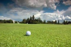 Bola de golfe no curso Imagem de Stock Royalty Free