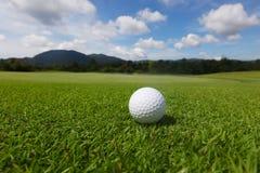 Bola de golfe no curso Imagens de Stock