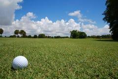 Bola de golfe no fairway fotografia de stock royalty free