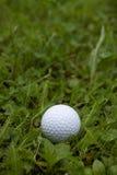 Bola de golfe no país Fotografia de Stock Royalty Free