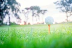 Bola de golfe no T no T fora com primeiro plano da grama verde do borr?o e para borrar o c?u colorido com fundo das ?rvores da si imagens de stock