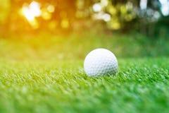 Bola de golfe no verde Fotografia de Stock Royalty Free