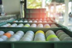 Bola de golfe plástica na cesta que espera alguém para jogar, spor imagem de stock royalty free