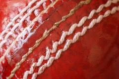 Bola de grillo Imagenes de archivo