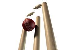 Bola de grilo que bate a perspectiva dos wicket isolada ilustração do vetor