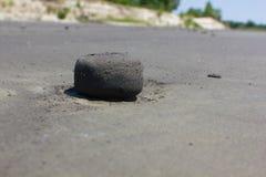 Bola de la arena en una playa Foto de archivo libre de regalías