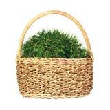 Bola de la hierba en cesta de mimbre Imagenes de archivo