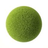 Bola de la hierba verde Fotografía de archivo libre de regalías
