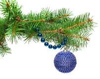 Bola de la Navidad con los granos azules en un branc del abeto Imágenes de archivo libres de regalías