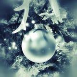 Bola de la Navidad en árbol Imágenes de archivo libres de regalías