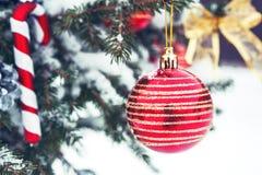 Bola de la Navidad en el árbol de navidad en la nieve Foto de archivo libre de regalías