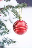 Bola de la Navidad en el árbol de navidad en la nieve Imagen de archivo