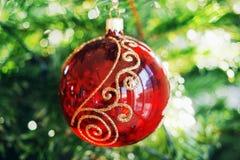 Bola de la Navidad en el abeto de las ramas Imagen de archivo libre de regalías