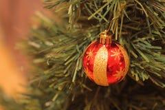 Bola de la Navidad en el pinetree Imagenes de archivo