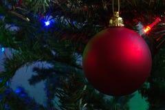 Bola de la Navidad en el pinetree Fotografía de archivo libre de regalías