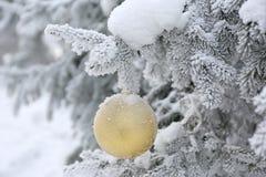 Bola de la Navidad en ramas de árbol escarchadas de abeto Fondo de la falta de definición del invierno Foto de archivo libre de regalías